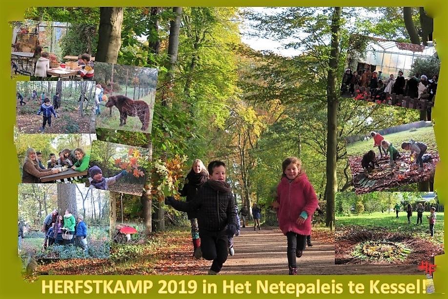 collagefoto-herfstkamp-2019b_LI-2hh